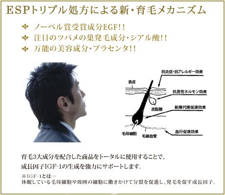 ESPトリプル処方による新・育毛メカニズム
